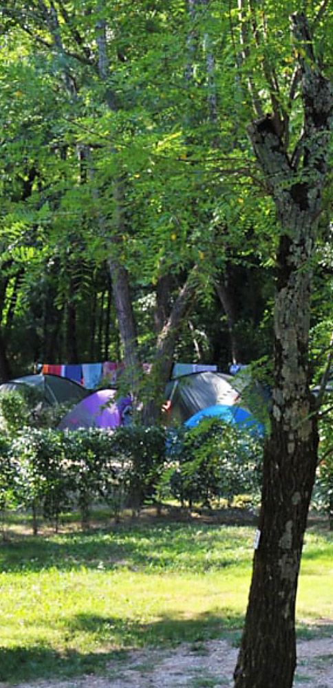 The campsite pitches